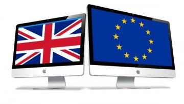 The Euro Referendum