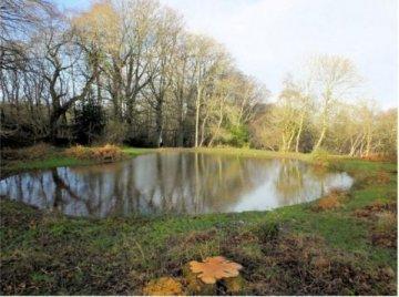 Renovation of a Quantock Pond